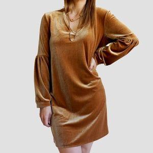NWT Madewell Velvet Balloon-Sleeve Dress Sienna